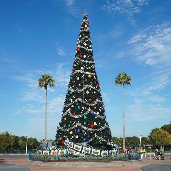 Walt Disney World Christmas 2014