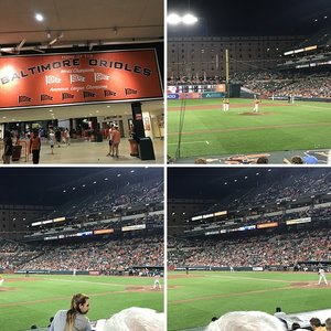 Red Sox/Orioles (August 2018)