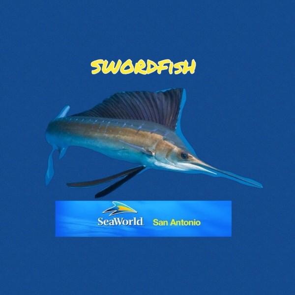 New Swordfish logo