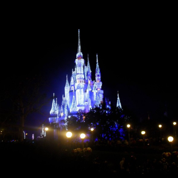 Cinderella Castle with Christmas Lights(2011)