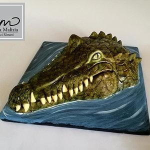 croc cake.jpg